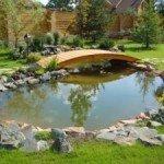 Будівництво декоративного водоймища