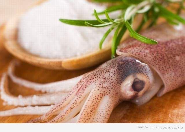 Цікаві факти про морепродуктах