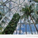 Jardim Botanico de Curitiba – Бразилія