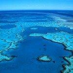 Цікаві факти про Великому Бар'єрному рифі