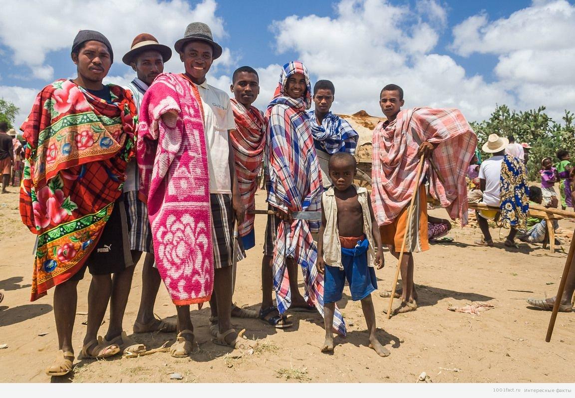 Факти про Мадагаскарі (частина 2)